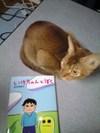 Ikecyan_to_boku_ren